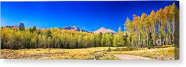 Panorama Autumn Bonanza Canvas Print by James BO  Insogna