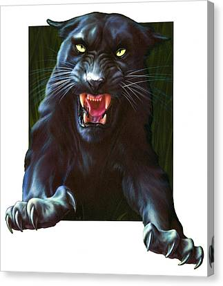 Panther Attack Canvas Print by Andrew Farley