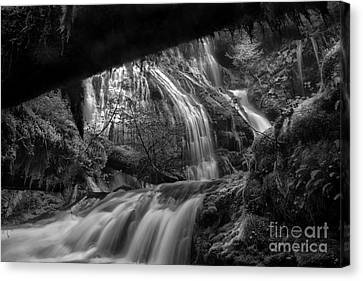Panther Falls II Canvas Print by Keith Kapple