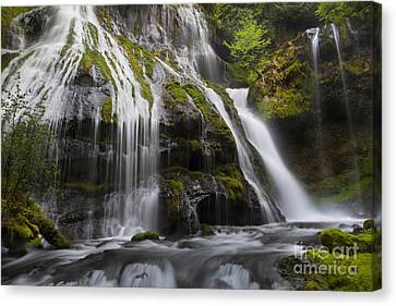 Panther Falls Canvas Print by Keith Kapple