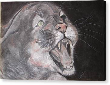 Panther Canvas Print by Rebecca Wiltfong Frisbee