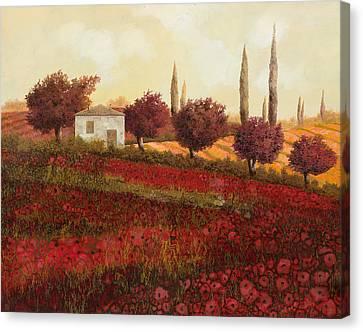 Papaveri In Toscana Canvas Print by Guido Borelli