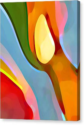 Paradise Found 6 Canvas Print by Amy Vangsgard