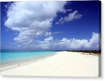 Paradise Canvas Print by Laura Hiesinger