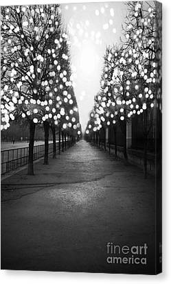 Paris Surreal Black And White Photography - Paris Tuileries Garden Fairy Lights Row Of Trees Canvas Print by Kathy Fornal