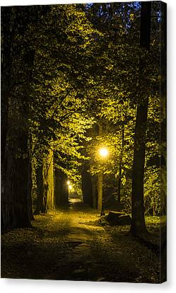 park Alley Canvas Print by Jaroslaw Grudzinski