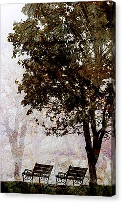 Park Benches Canvas Print by Carol Leigh