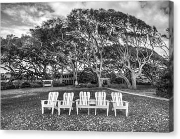 Park Under The Oaks Canvas Print by Debra and Dave Vanderlaan
