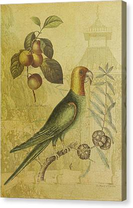Parrot With Plums Canvas Print by Sarah Vernon