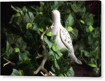 Partridge In The Ivy Canvas Print by Tom Mc Nemar