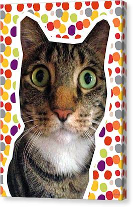 Party Animal- Cat With Confetti Canvas Print by Linda Woods