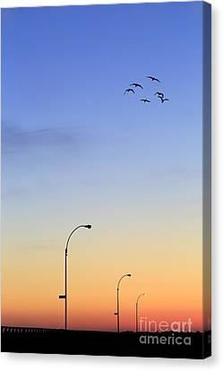 Passage Into Dawn Canvas Print by Evelina Kremsdorf