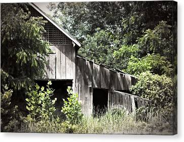 Passing Of Time Canvas Print by Tom Gari Gallery-Three-Photography