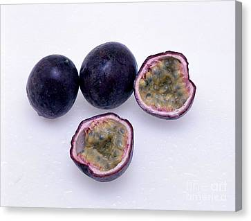 Passion Fruit Canvas Print by G. Buttner/Okapia