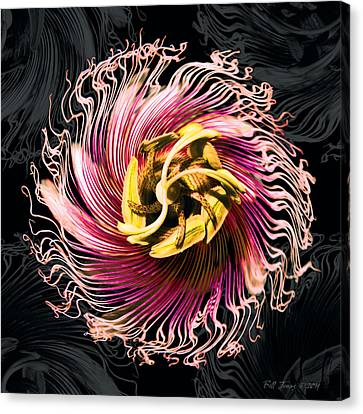 Passionfruit With A Twist Canvas Print by Bill Jonas