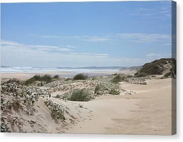 Pastel Dunes Canvas Print by Elaine Teague