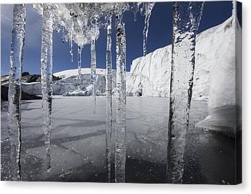 Pastoruri Glacier Icicles Cordillera Canvas Print by Cyril Ruoso