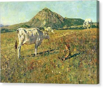 Pasture In Pietramala Canvas Print by Telemaco Signorini