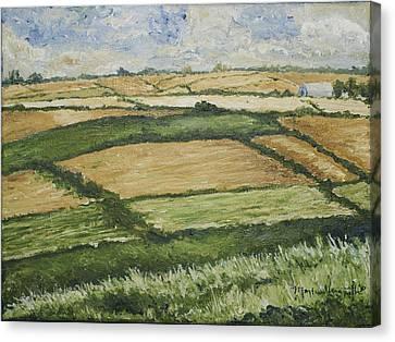 Patchwork Fields Canvas Print by Monica Veraguth