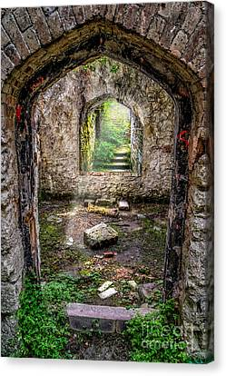Path Less Travelled Canvas Print by Adrian Evans