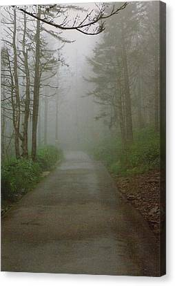 Path To Clingmans Dome Canvas Print by Karin Thue