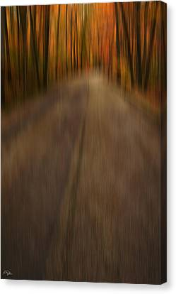 Path To Life Canvas Print by Lourry Legarde