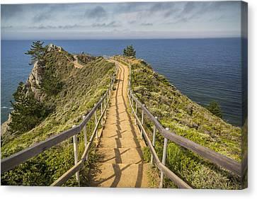 Path To Muir Beach Overlook Canvas Print by Adam Romanowicz