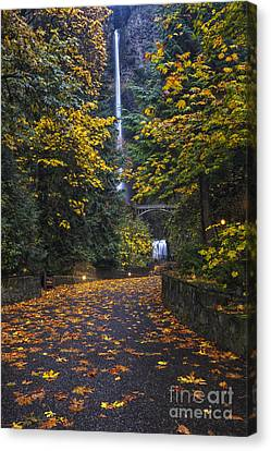 Path To Multnomah Falls Canvas Print by Mark Kiver