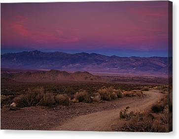 Path To The Mountains Canvas Print by Andrew Soundarajan
