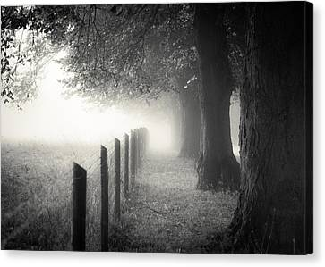 Pathway Canvas Print by Chris Fletcher