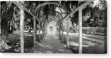 Pathway In A Botanical Garden, Jardim Canvas Print by Panoramic Images
