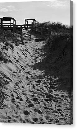 Pathway Through The Dunes Canvas Print by Luke Moore