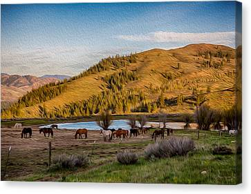 Patterson Mountain Afternoon View Canvas Print by Omaste Witkowski