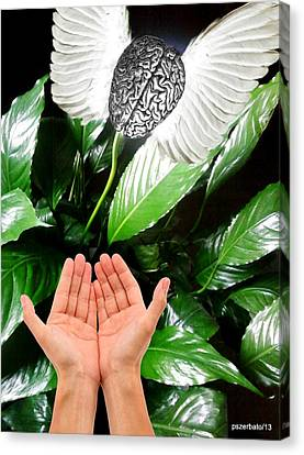 Peace Lily For The Consciousness Canvas Print by Paulo Zerbato