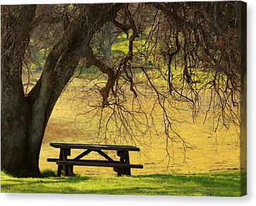 Peace  Canvas Print by Rima Biswas