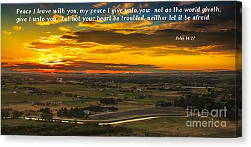 Peace Canvas Print by Robert Bales