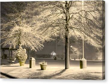 Peaceful Blizzard Canvas Print by JC Findley