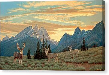 Peaceful Evening - Tetons Canvas Print by Paul Krapf