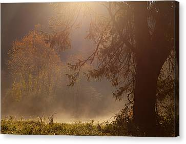 Peaceful Moments Canvas Print by Karol Livote