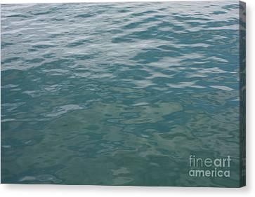 Peaceful Water Canvas Print by Carol Groenen