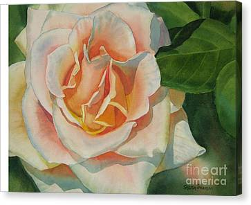 Peach And Gold Colored Rose Canvas Print by Sharon Freeman