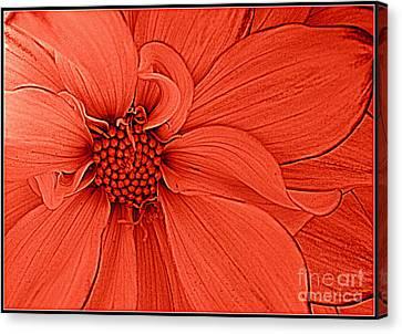 Peach Blossom Canvas Print by Dora Sofia Caputo Photographic Art and Design