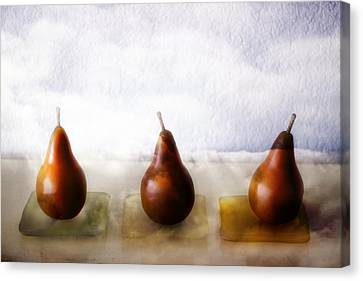 Pears In The Clouds Canvas Print by Carol Leigh