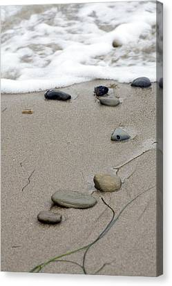 Pebbles On The Beach Canvas Print by Terry Thomas