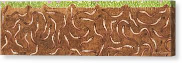 Peggy's Worm Farm Canvas Print by Anne Geddes
