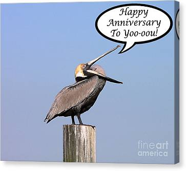 Pelican Anniversary Card Canvas Print by Al Powell Photography USA