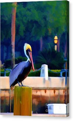 Pelican On Post Artistic Canvas Print by Dan Friend