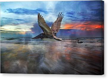Pelican Sunrise Canvas Print by Betsy Knapp