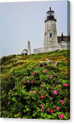 Pemaquid Point Canvas Print by Karol Livote