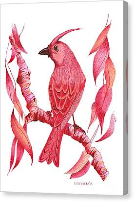 Pen And Ink Drawing Of Red Bird Canvas Print by Mario Perez